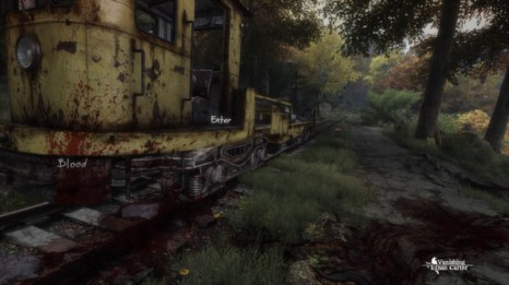 The Vanishing of Ethan Carter Screen 5
