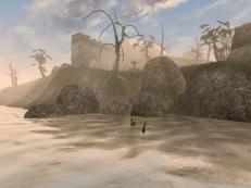 The Elder Scrolls III - Morrowind Screen 4
