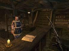 The Elder Scrolls III - Morrowind Screen 5