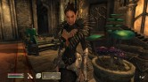 The Elder Scrolls IV - Shivering Isles Screen 1