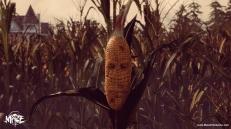 Maize Screen 2